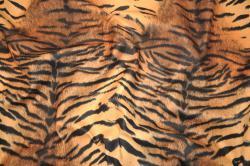 Microfaser Tierimitat - Tiger