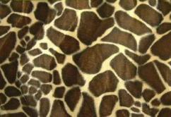 Kurzfell Imitat - Giraffe